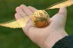 SEO and PPC Golden Snitch
