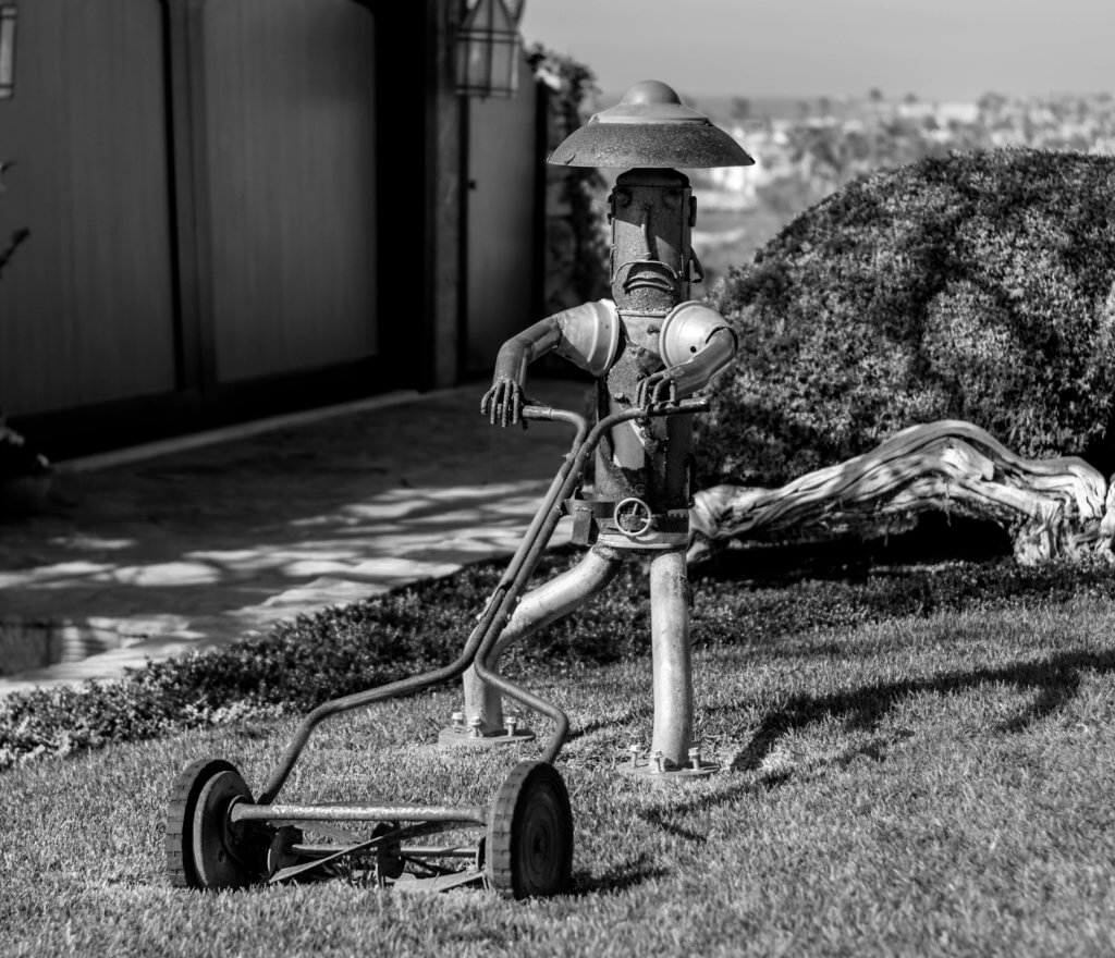 Robot using a lawn mower