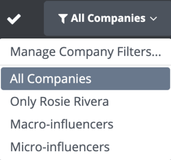 Use company filters to group your social data by micro and macroinfluencers