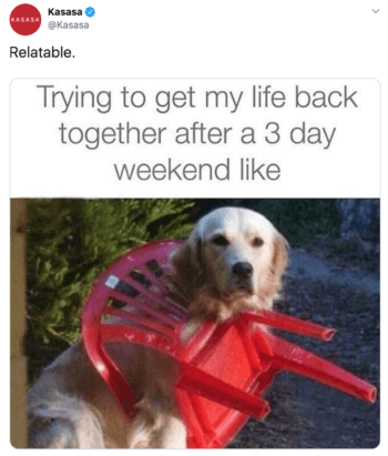 "Kasasa's tweet contains a golden retriever stuck in a plastic chair stating ""trying to get my life back together after a three day weekend like"""
