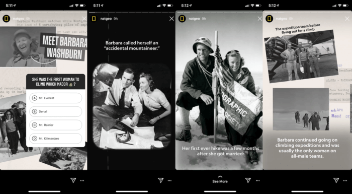 This series of four similar frames from National Geographic follows Instagram Stories best practices with its consistent look and feel.